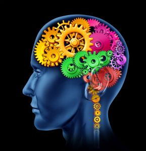 brain_color_gears