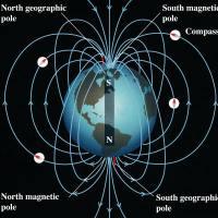 Elektromanyetik Kirliliğin Sağlığa Zararları ve Korunma Yöntemleri-Electrosmog