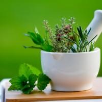 Şifalı Bitkilerle Tedavi - Fitoterapi